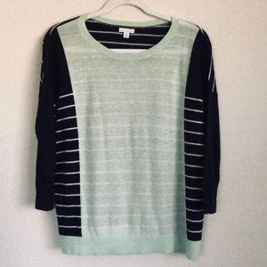 Gap Navy & Mint Stripe Sweater